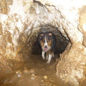 Höhlensuche1